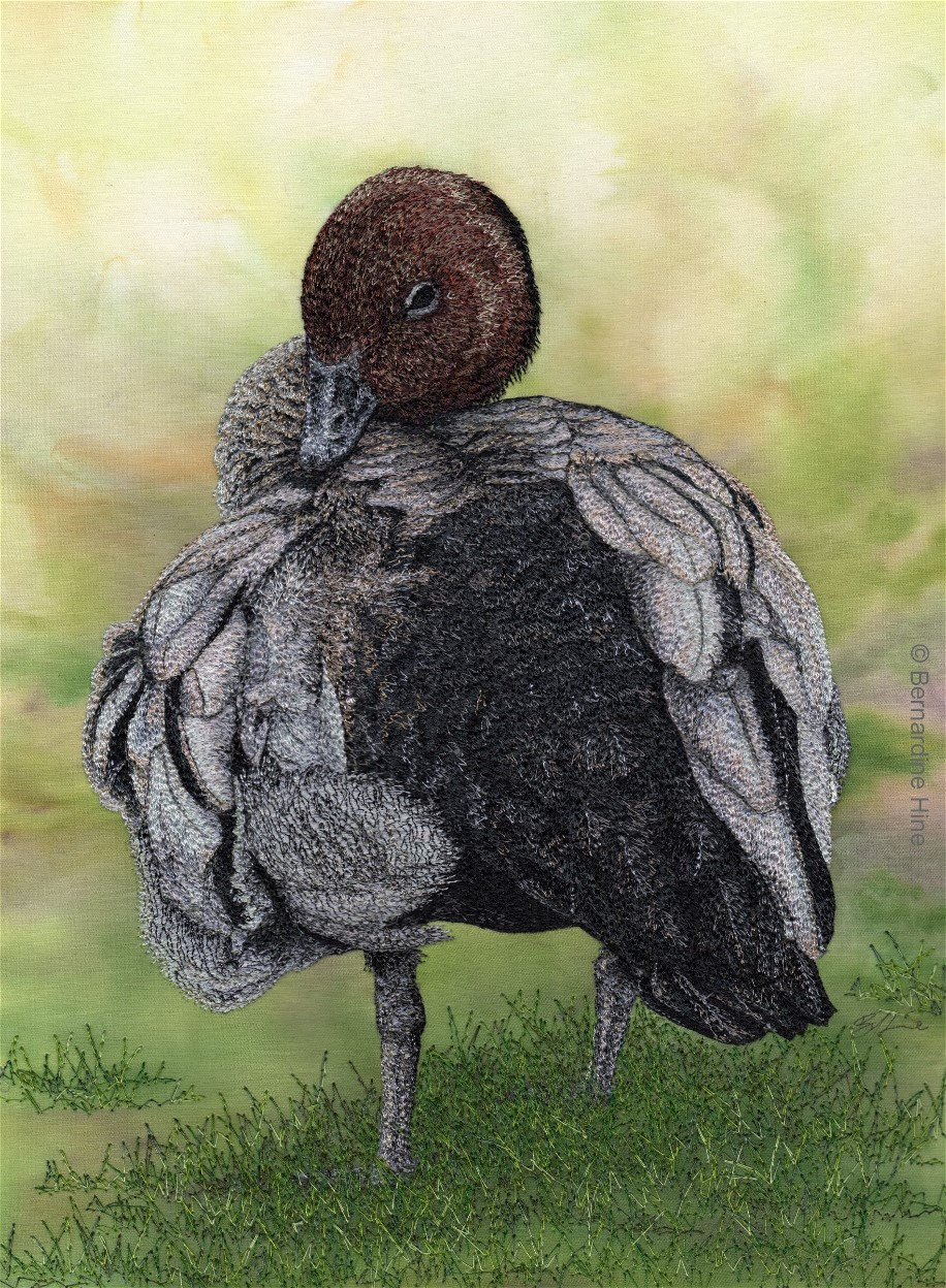 The Holmes Prize for Realistic Australian Bird Art